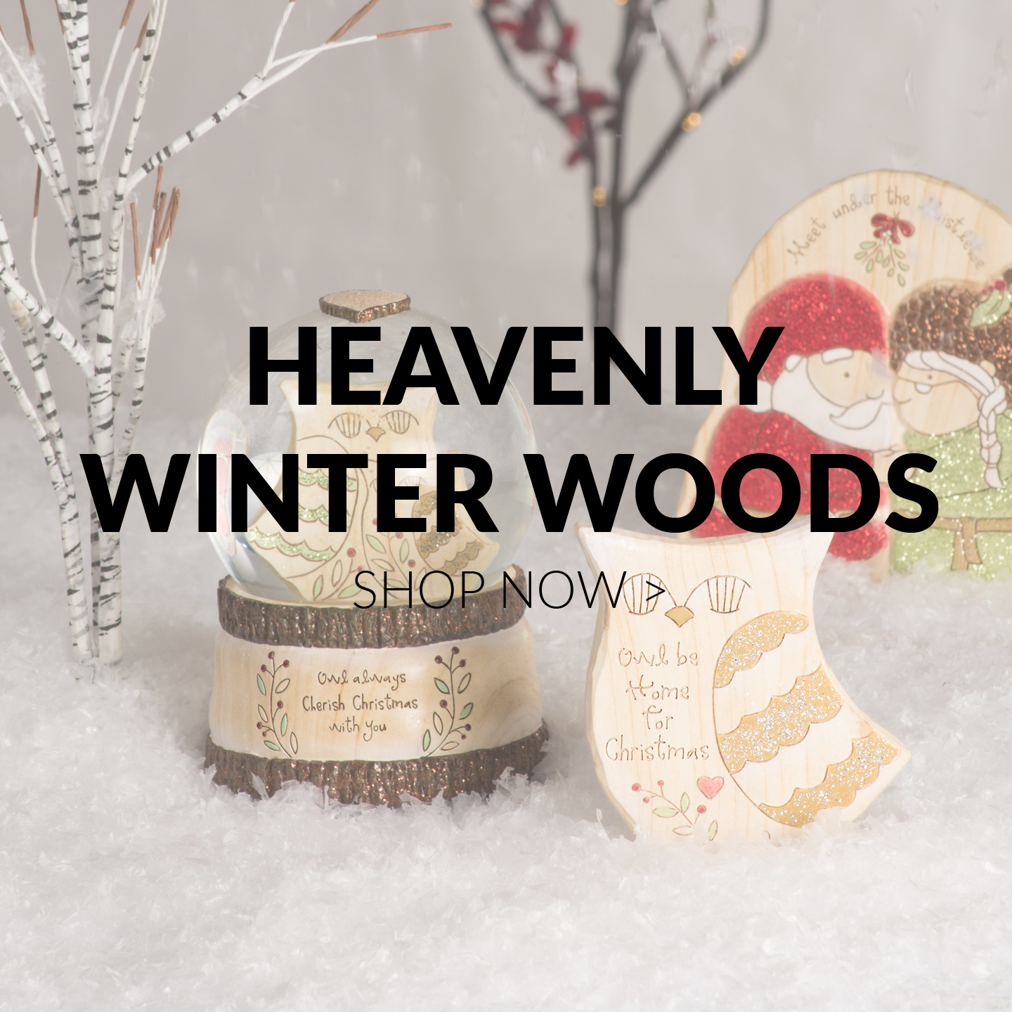 Heavenly Winter Woods