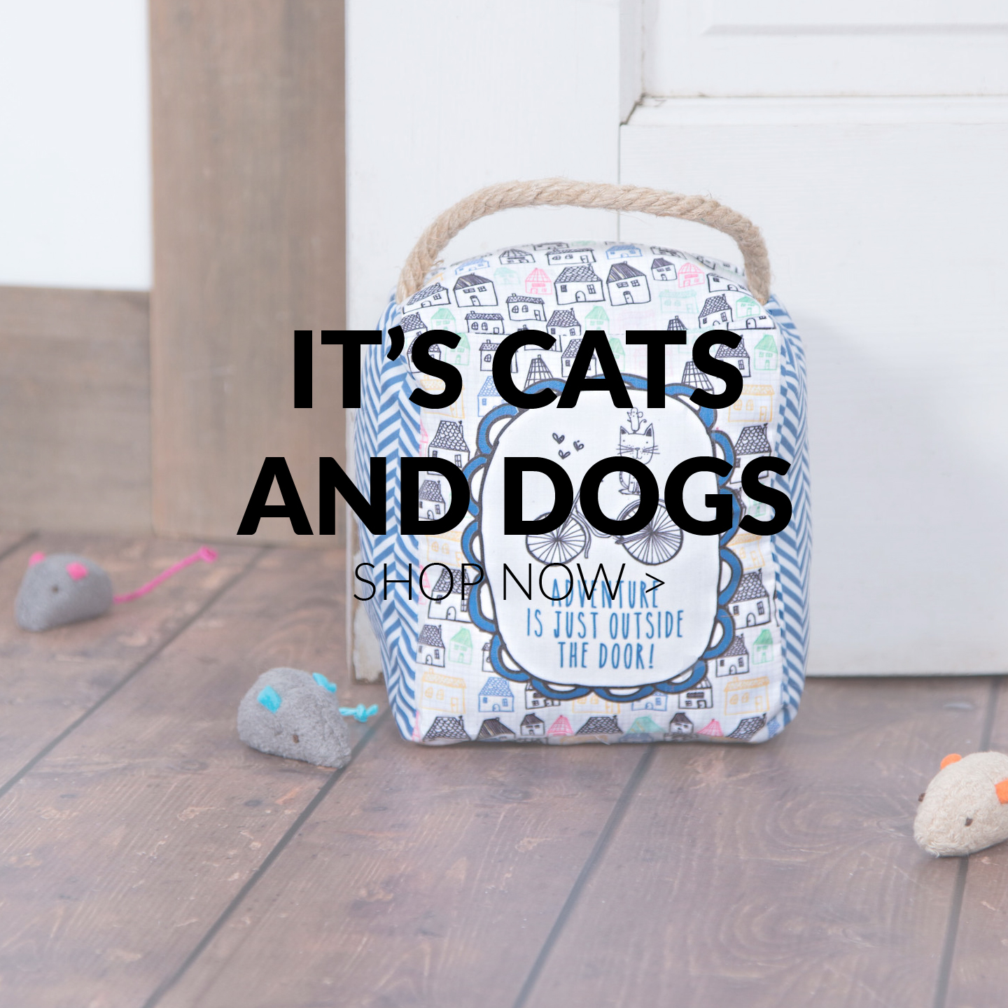 It's Cats and Dogs By Amylee Weeks