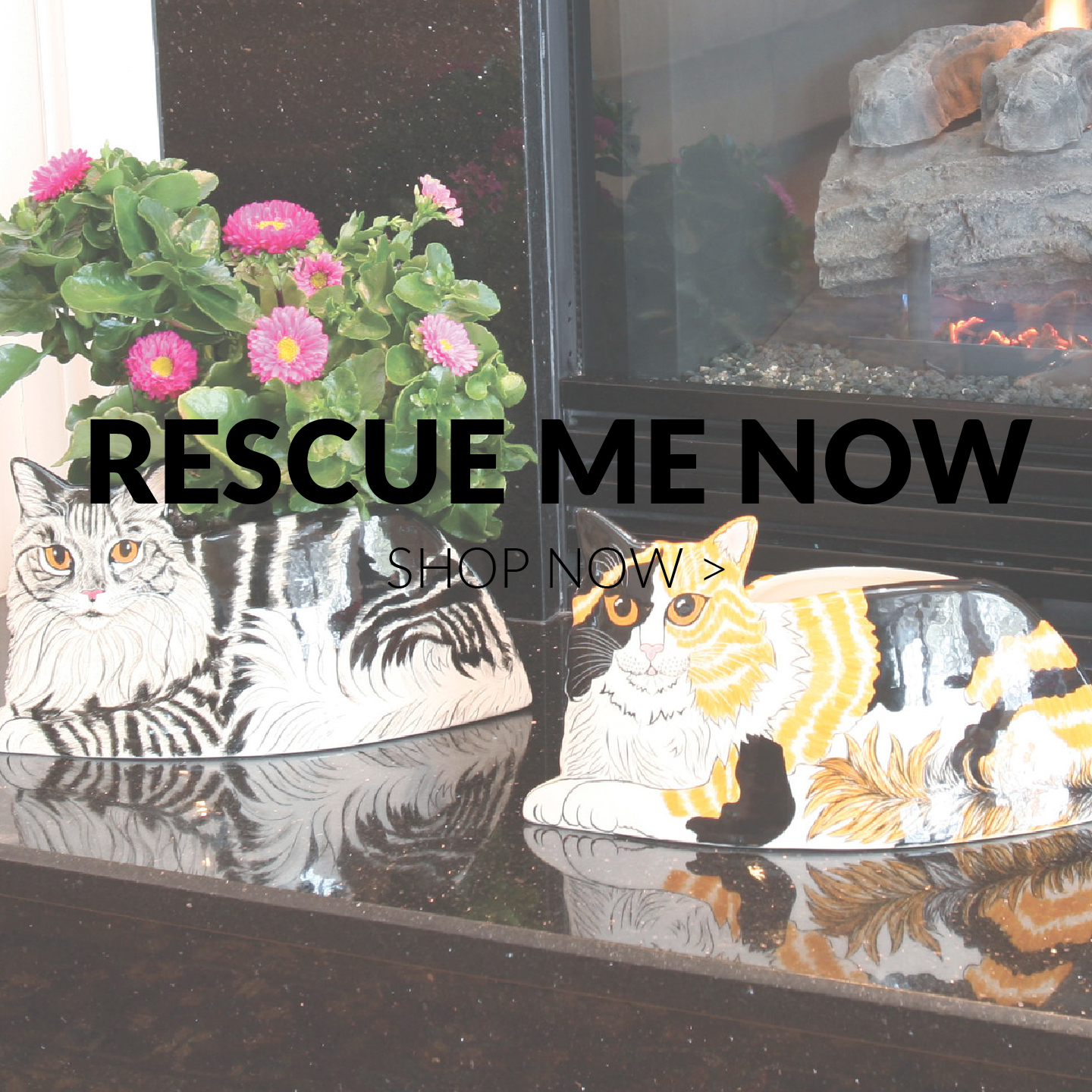 Rescue Me Now by Nina Lyman