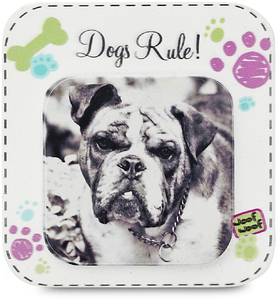 "Dogs Rule by Candidly...LOL - 2.75"" x 2.75"" Magnet"