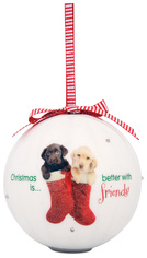 Friends by Shaded Pink - 100mm Blinking Ornament