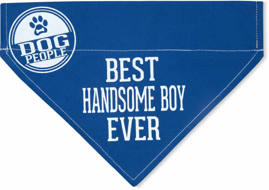 "Handsome Boy by We Pets - Handsome Boy - 12"" x 8"" Canvas Slip on Pet Bandana"