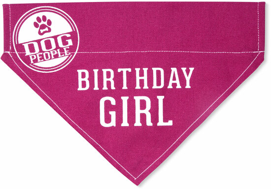 "Birthday Girl by We Pets - Birthday Girl - 12"" x 8"" Canvas Slip on Pet Bandana"